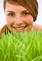 what-is-wellness-grass